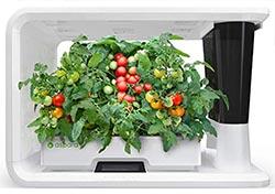 16 Pod Indoor Hydroponic Garden
