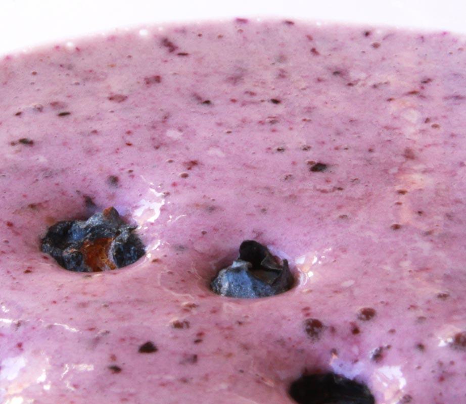 Blueberry-Vanilla-Yogurt Protein Shake