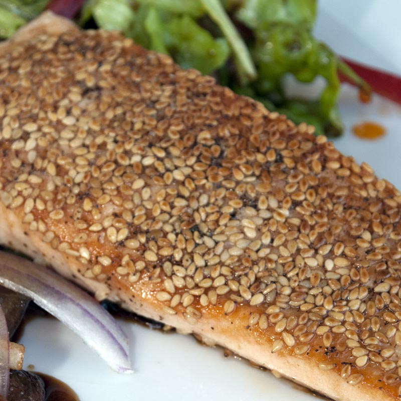 Sesame Crusted Salmon with Soy Lime Salad